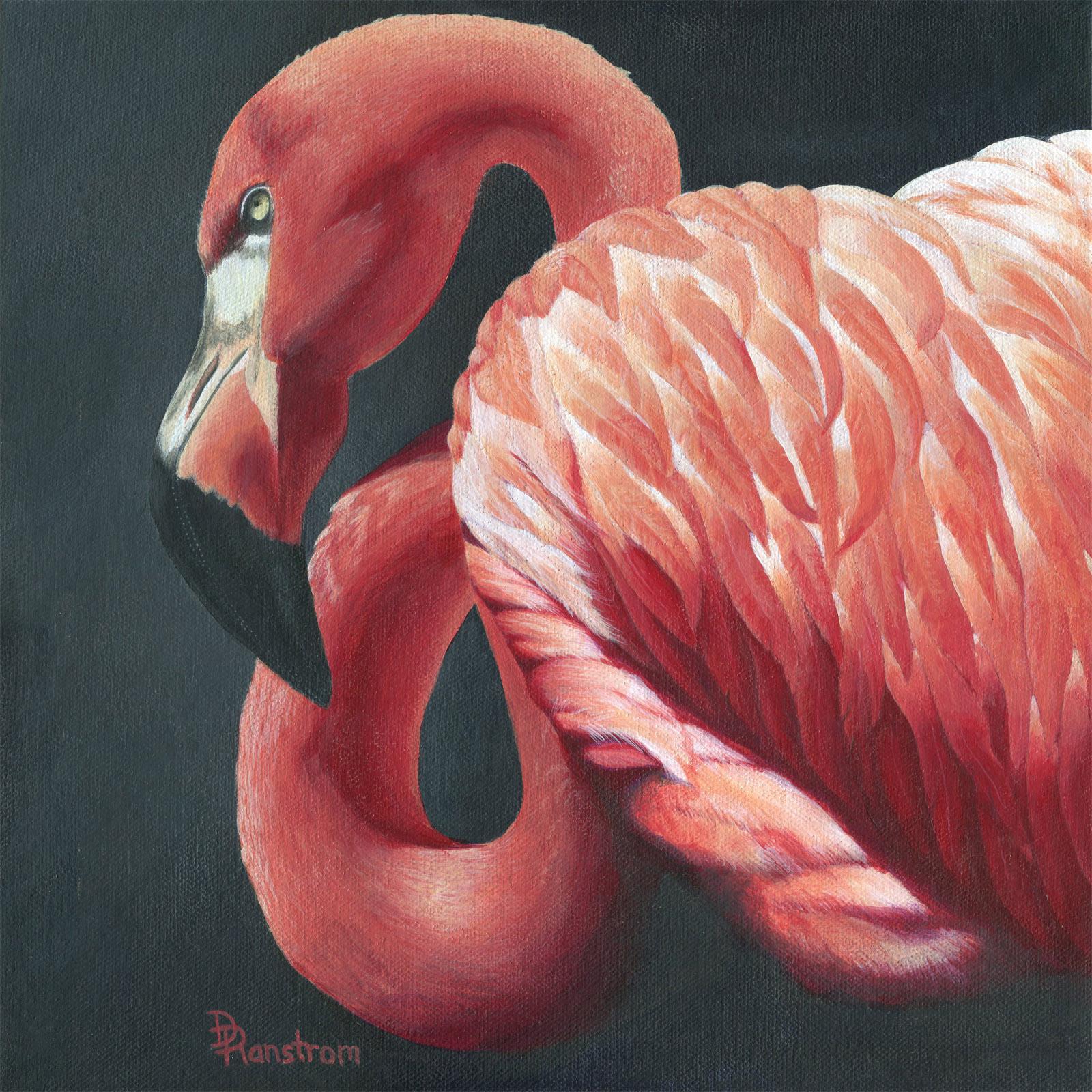 Fierce Flamingo
