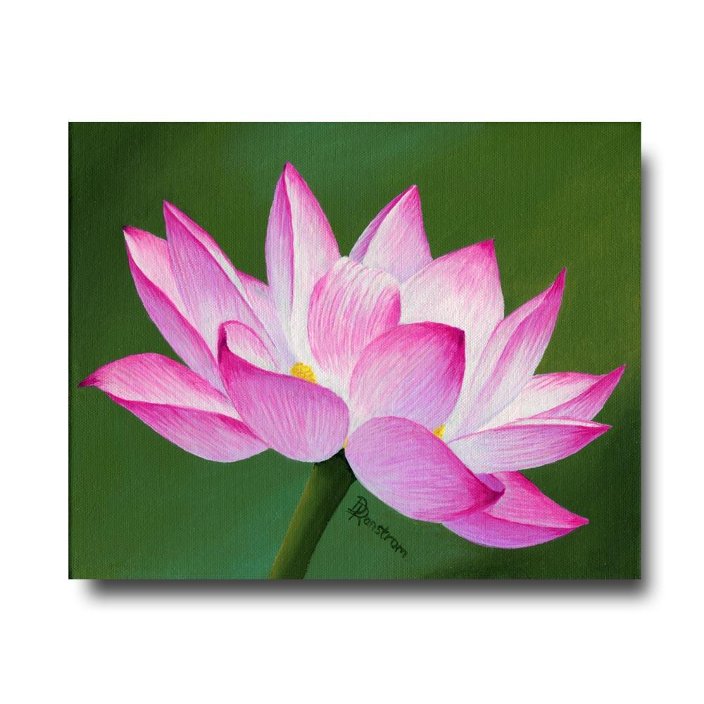 Pink Lotus thumb1