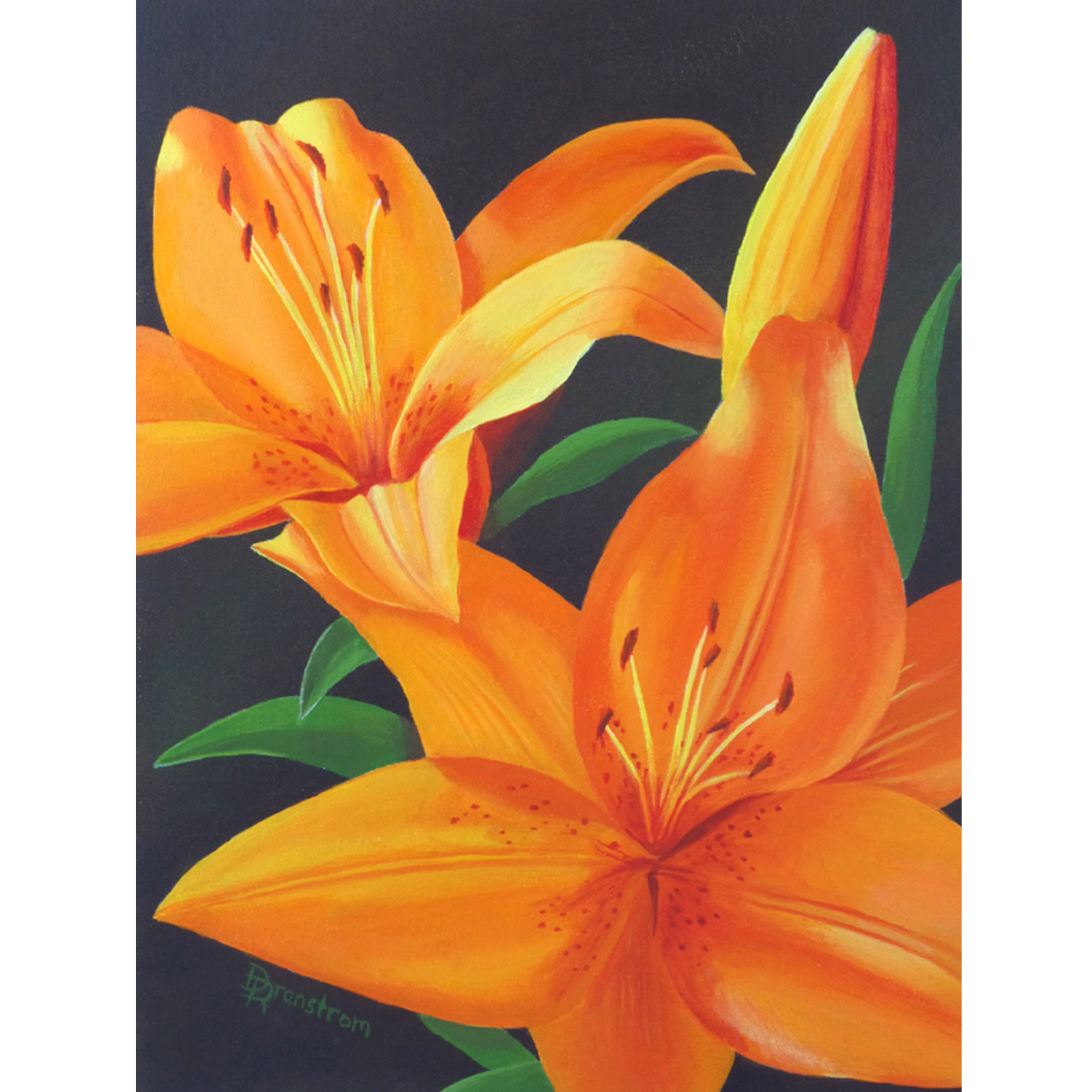 orange lilies square