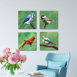 Bird Art Collection