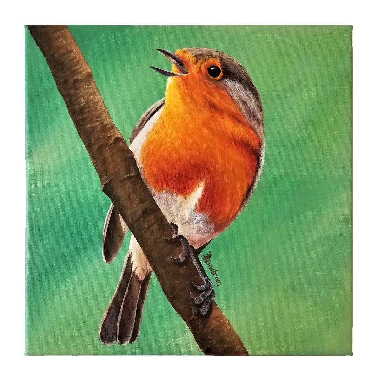 european robin painting