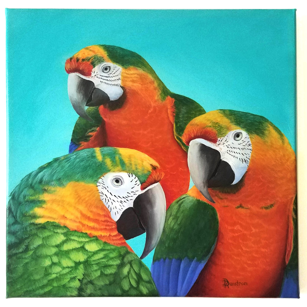 macaws acrylic painting