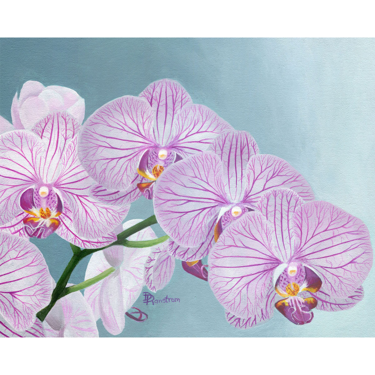 purple orchids acrylic